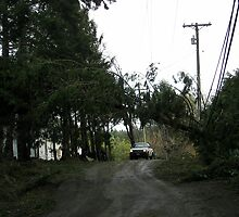 The aftermath of the December 11th, 2006 storm. by TheKoopaBros
