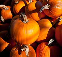 Pile of traditional pumpkins by Arletta Cwalina
