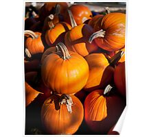 Pile of traditional pumpkins Poster