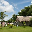 Fijian Village by Rhona