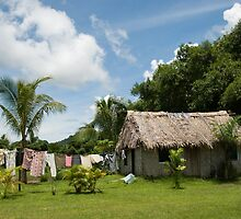 Fijian Village by Rhona