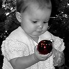 """""""What's This Pretty Red Ball""""? by © Loree McComb"""