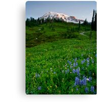 Mountain Dawn Canvas Print