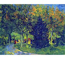 'Allee in the Park' by Vincent Van Gogh (Reproduction) Photographic Print