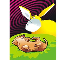 Dot dreams of Banana Goat Photographic Print