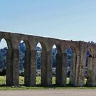 Panoramic View of Roman Aqueduct by Steve
