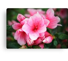 Flower #6 Canvas Print
