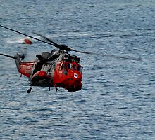 Sea King by imageaviation