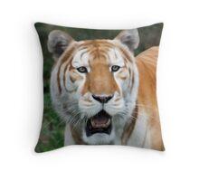 Sahib Throw Pillow