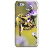 Carpenter Bee and Purple Flowers iPhone Case/Skin