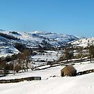 Classic view from Reeth by clickinhistory