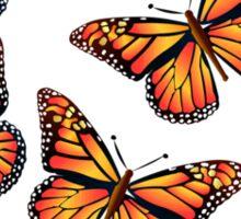 Butterflies: T-shirt Sticker