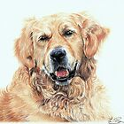 Retriever by L K Southward