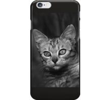 """Chat - Cat """" Peluche """" 03 (c)(h) ) by Olao-Olavia / Okaio Créations 300mm f.2.8 canon eos 5 1989  iPhone Case/Skin"""
