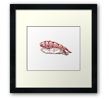 Shrimp sushi Framed Print