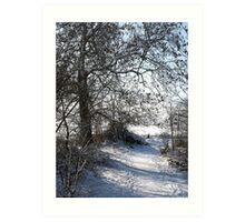 Snow Scene 1 Art Print