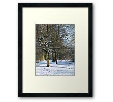 Snow Scene 2 Framed Print