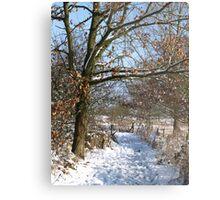Snow Scene 3 Metal Print