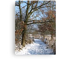 Snow Scene 3 Canvas Print