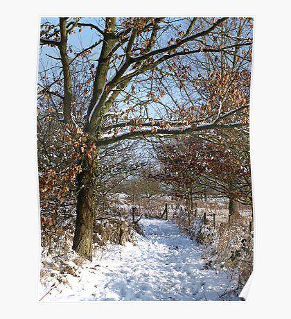 Snow Scene 3 Poster