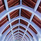 Blue Arches by dbvirago