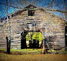 Grey Barn by Lisa Taylor