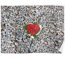 Flower Heart Of The Ocean Poster
