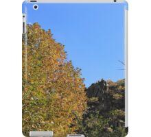 The Violet Valley Mountanin iPad Case/Skin