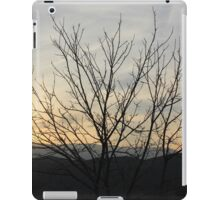 The bitter sunset iPad Case/Skin