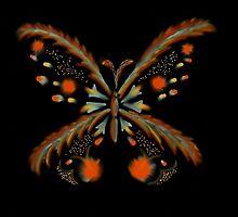Blazing Butterfly by windflower