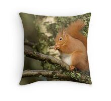 Scottish Red squirrel Throw Pillow