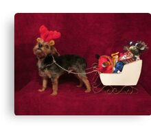 Dog with antlers & sleigh Canvas Print