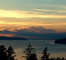Cloake Hill Sunset by George Cousins