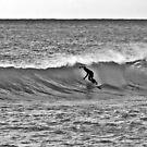Surfers Rejoice by Tommy Seibold