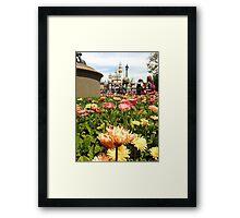 Disney & Daisies  Framed Print