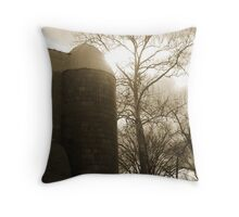 Grain Silo Throw Pillow