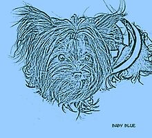 Baby Blue by Gail Bridger