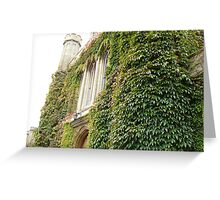 the castle unkempt Greeting Card