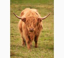 Highland Cow in Scotland Unisex T-Shirt