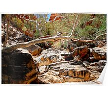 West Macdonnell Ranges X Poster