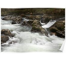 Calapooia River Oregon Poster