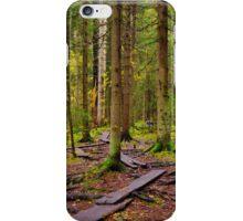 Planks iPhone Case/Skin