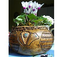 Pine needle and gourd basket Photographic Print