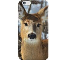 Whitetail Deer, Upstate NY iPhone Case/Skin