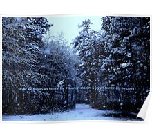 Snow Bathed in Blue Light  Poster