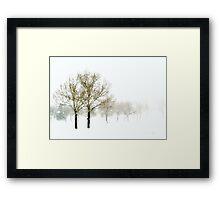 Spring Snowstorm Framed Print