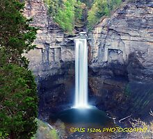 Taughannock gorge  by PJS15204