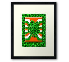 Bunch of Irish Shamrock for Saint Patrick's Day Framed Print