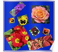 Crazy Summer Flowers Collage Poster