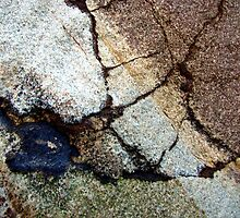 Rockweb by Kathie Nichols
